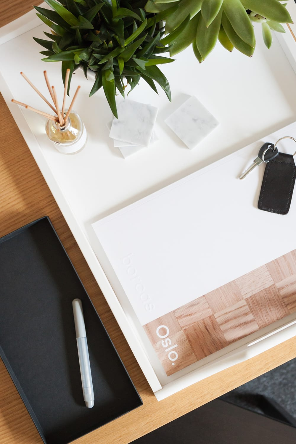 White tray with two plants, and catalogue placed on a wooden desk in a office. borcas brand